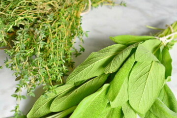 how to dry herbs and store them